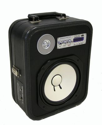 Unique Portable Bar Case Stereo