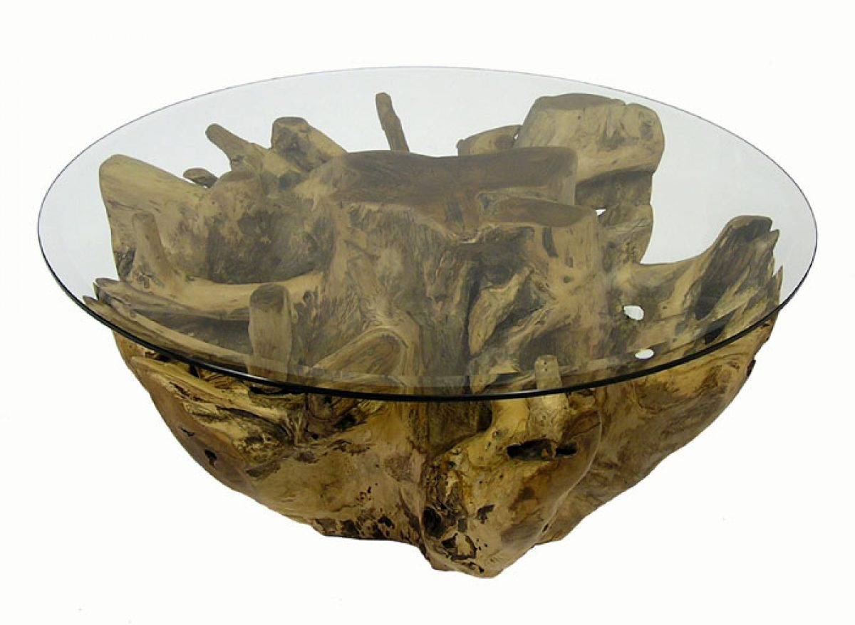 Teak Root Coffee Table w/Beveled Glass Top – Hoopers Modern